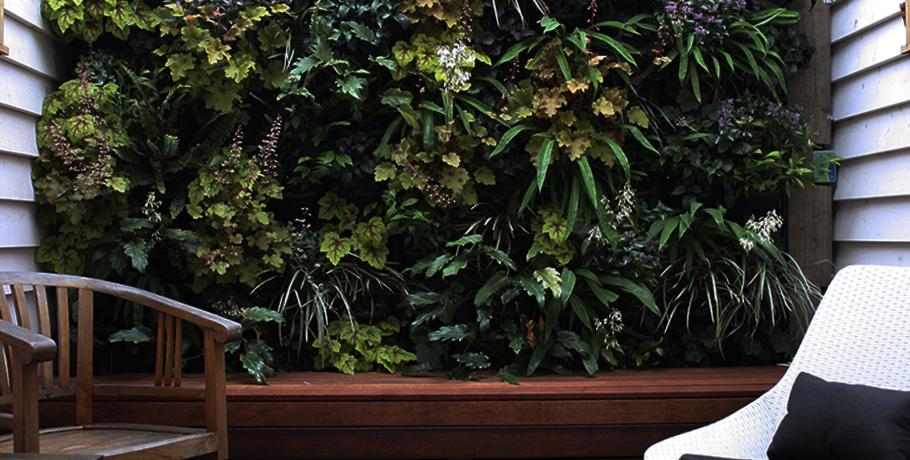 Faça você mesmo: jardim vertical na sua varanda